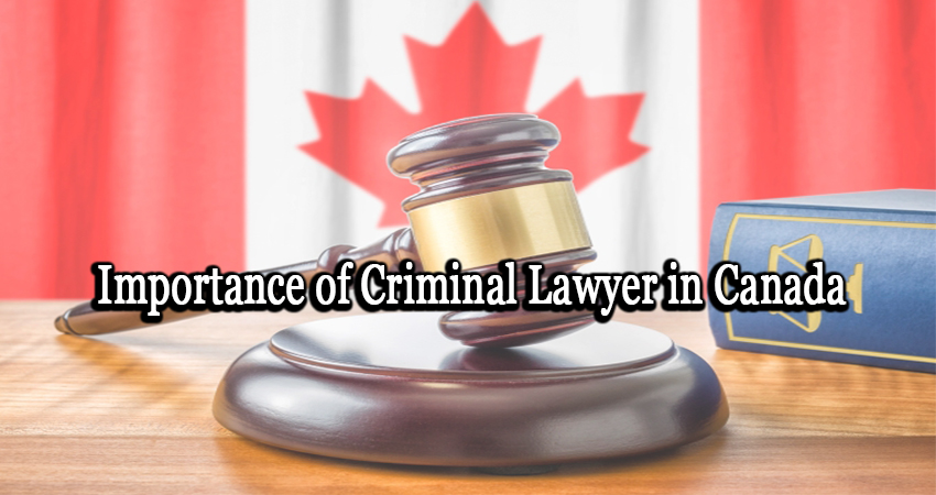 Importance of Criminal Lawyer in Canada